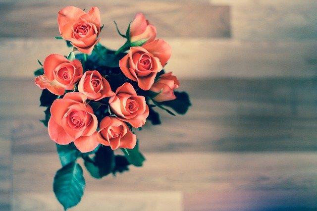 Věnujte květinu na dálku
