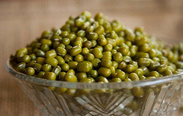 zelené mungo fazole